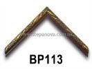 bp113